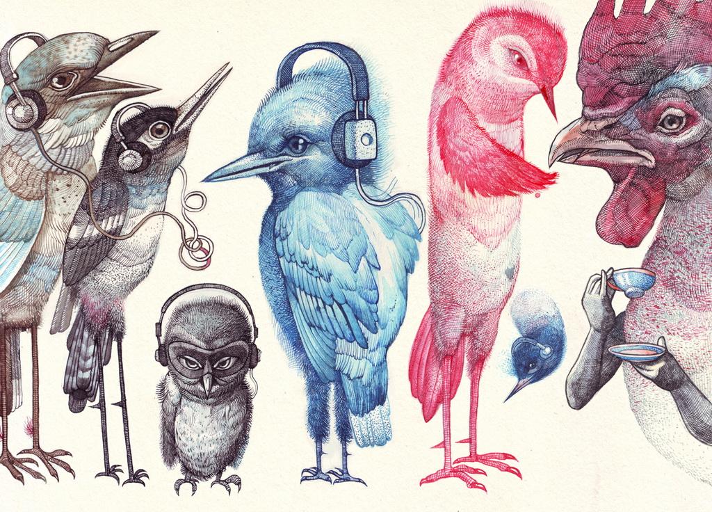 0-Vtáci