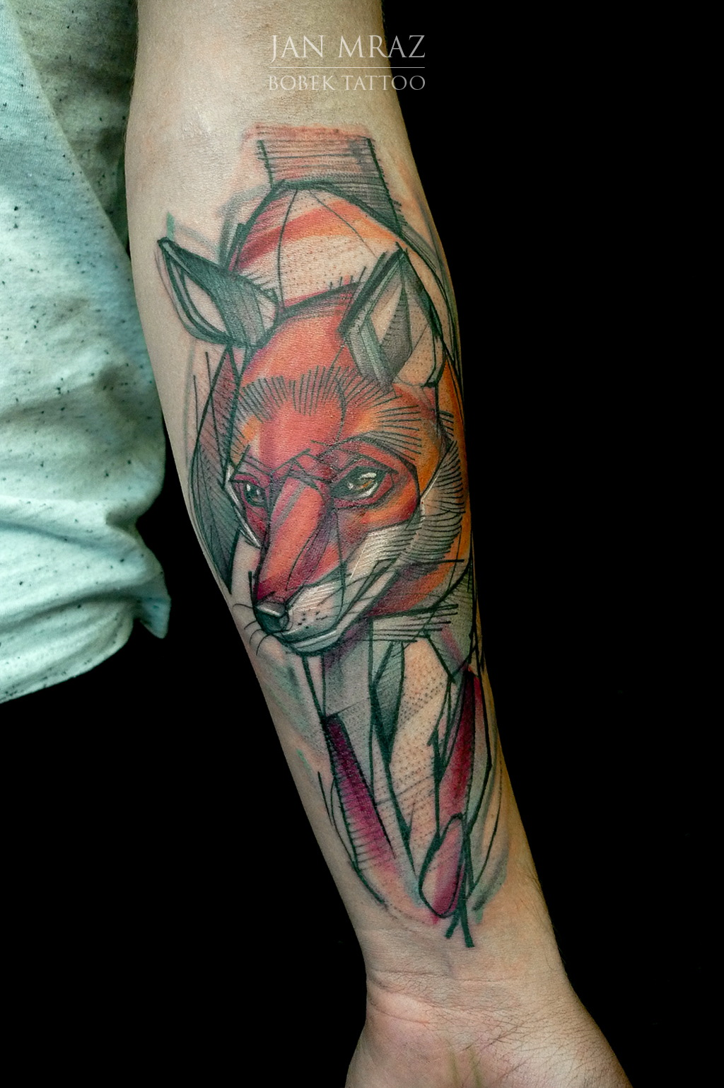 Dominik Dora fox 2015 ps 1024 2