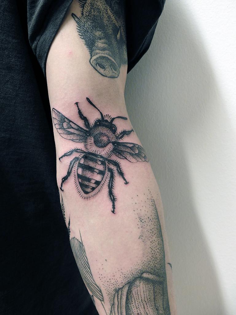 Prokop Bee
