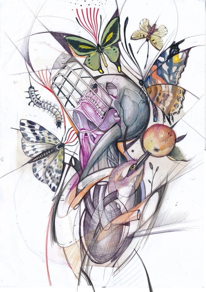 Rukav sketch